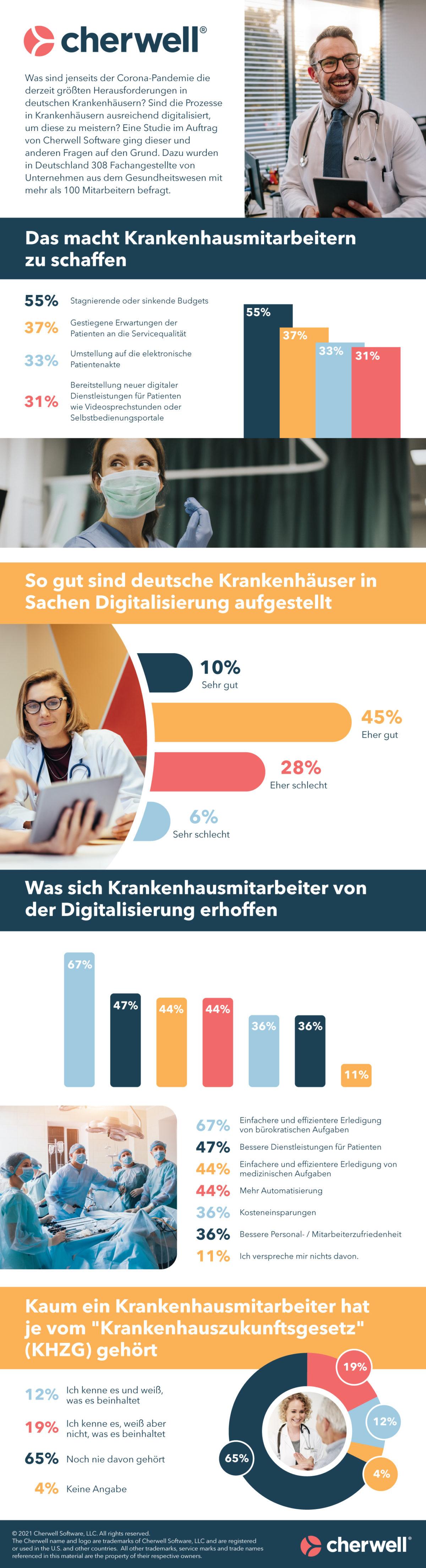 Healthcare-Survey-Infographic-(German)