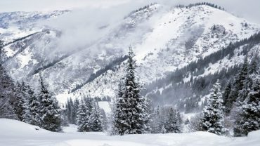 Winterlandschaft aufgenommen mit einem OnePlus Smartphone