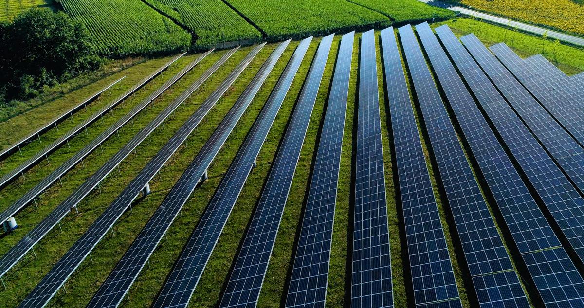 Sharp_Solar Park_Beispiel